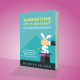 (book) Marketing On-A-Budget for Kids Entertainers